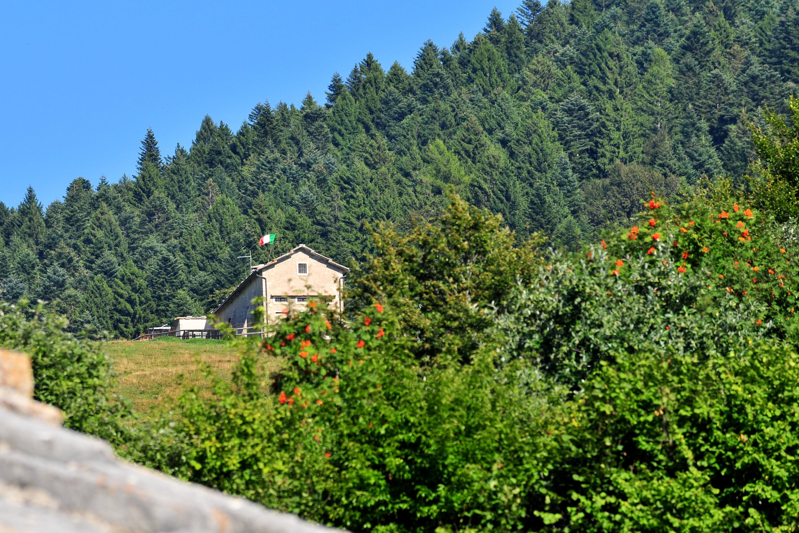 Le malghe del Trentino: uno dei piaceri a cui non si può rinunciare sulle Dolomiti