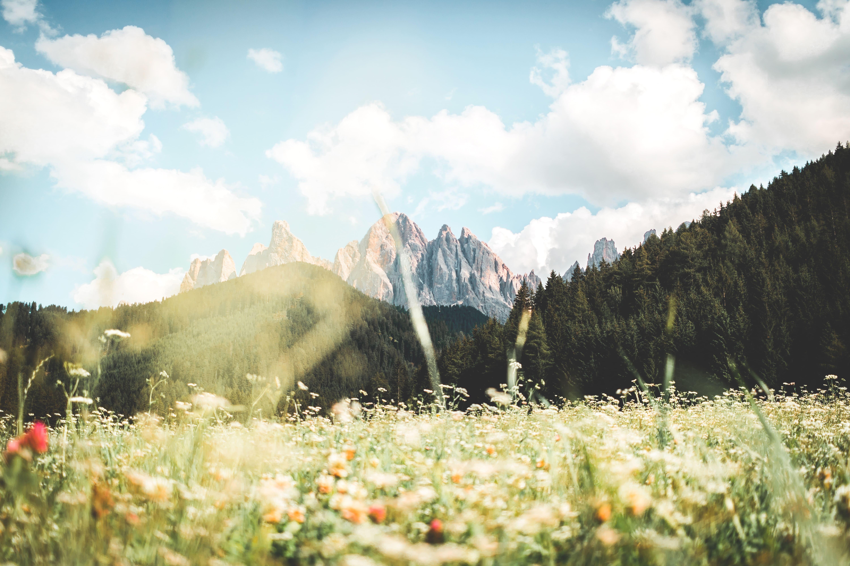 Camminare nella natura delle Dolomiti fa bene alla mente e al cuore