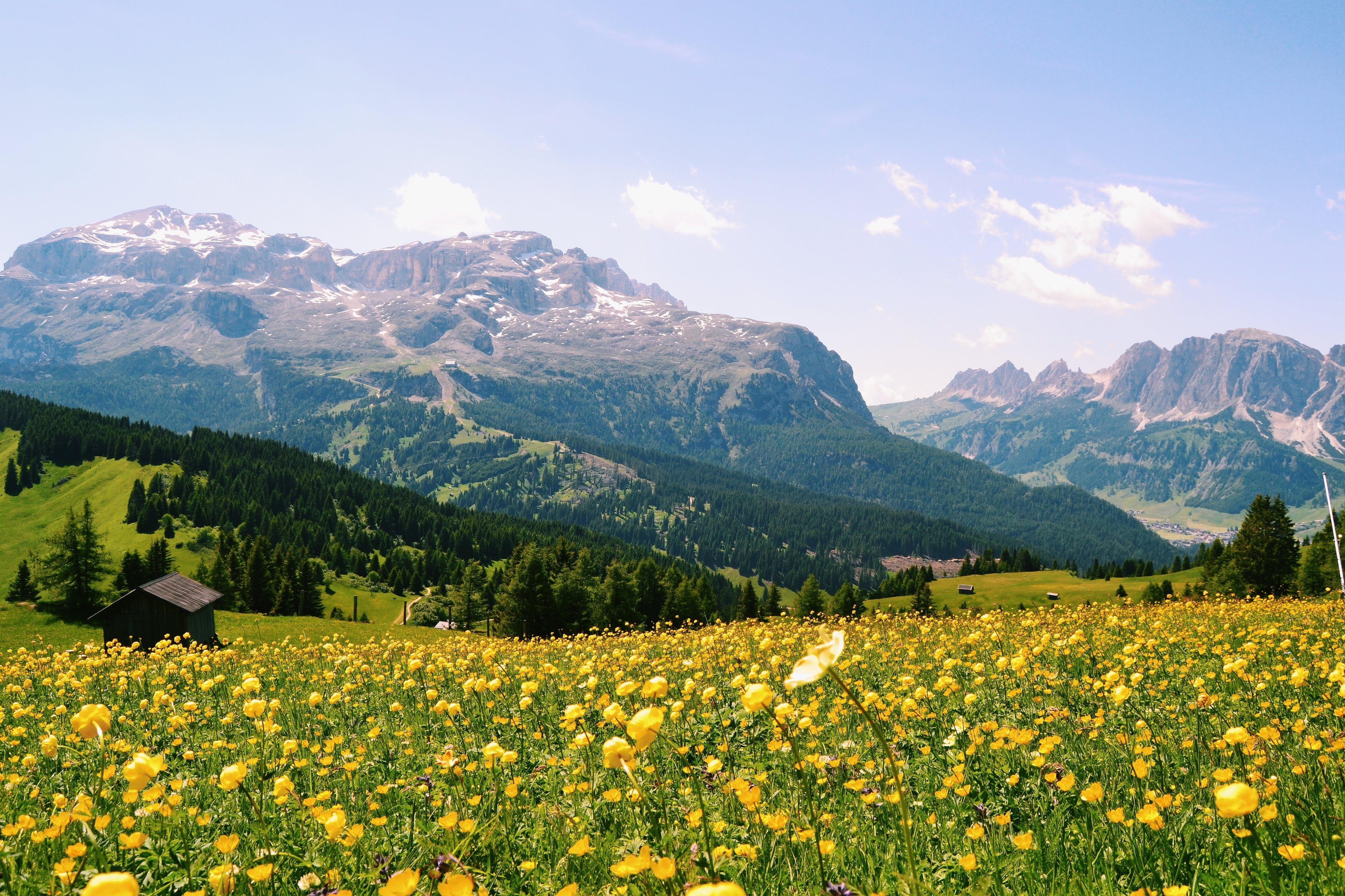 Escursione panoramica sopra Corvara: da Col Alt al Rif. Pralongià