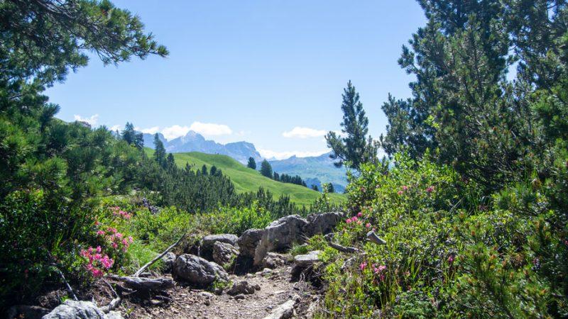 Alta via di Colfosco: dal Rifugio Jimmi Hütte al centro di Colfosco